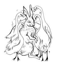 Mr. Hare