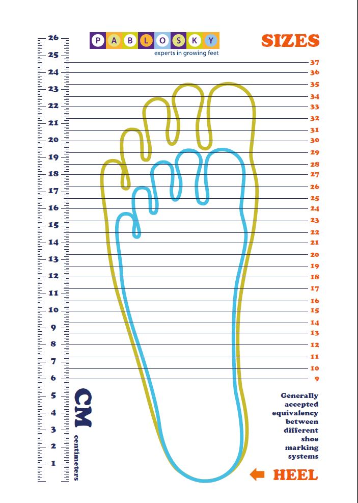 Bear Feet Shoes Size Chart