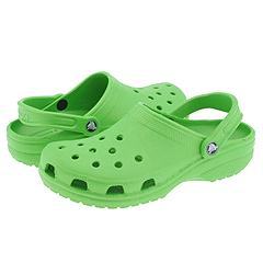 The Croc, Scourage of a Generation