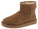 UGG - Classic Mini (Chestnut) - Footwear