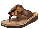 Clarks - Latin Samba (Brown Leather) - Footwear