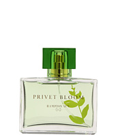Hampton Sun - Privet Bloom 1.7 ml Eau de Toilette