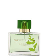 Hampton Sun - Privet Bloom 1.7 ml Eau de Parfum