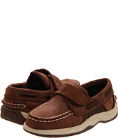 Sperry Kids - Intrepid H&L (Toddler)