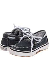 Sperry Kids - Halyard (Toddler)