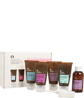 Pangea Organics - Discovery Kit - Normal/Dry Skin
