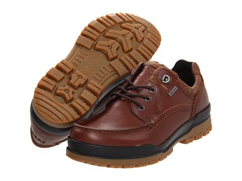 ECCO - Track 6 GTX Moc Toe Tie (Bison/Cocoa Brown) - Footwear