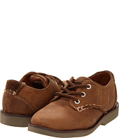 Sperry Kids - Harpin (Toddler)