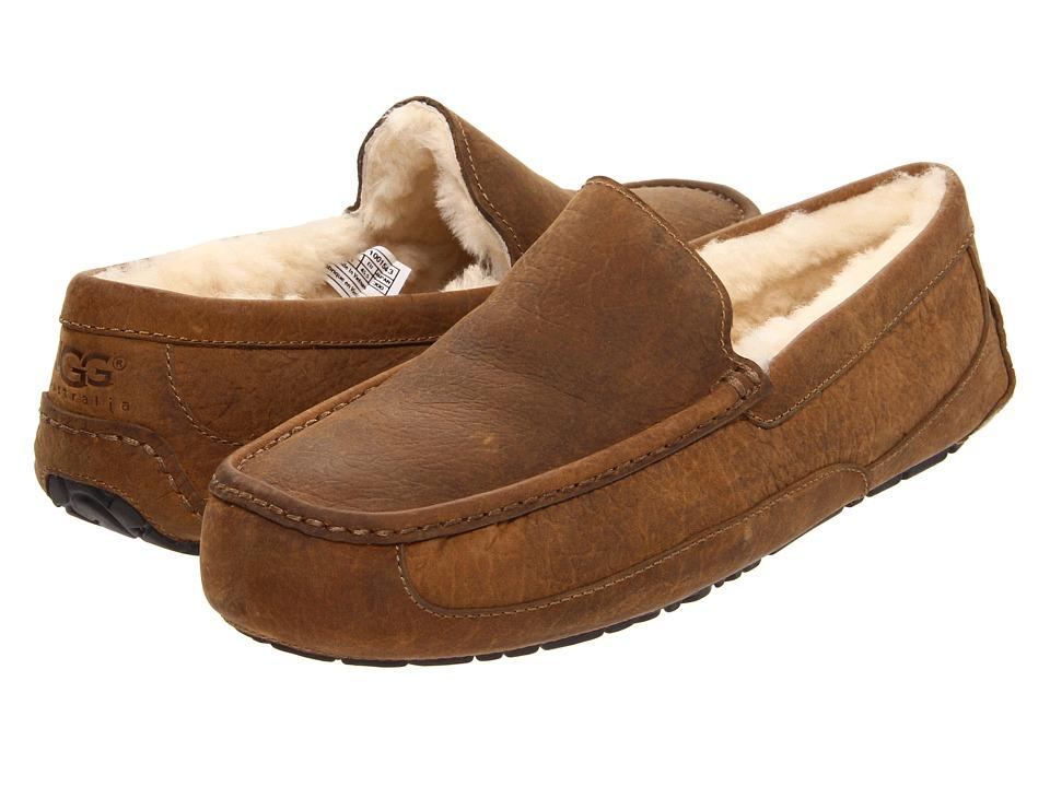 UGG - Ascot (Chestnut Leather) Men