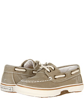 Sperry Kids - Halyard (Infant/Toddler)