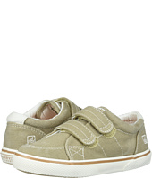 Sperry Top-Sider Kids - Halyard H&L (Toddler/Little Kid)