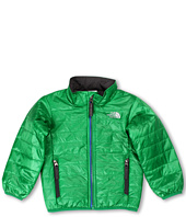 The North Face Kids - Boys' Blaze Jacket 13 (Toddler)