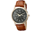 Citizen Watches AO9003-08E Eco-Drive Rose Gold Tone Day-Date Watch