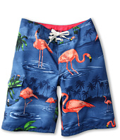 Vans Kids - Off the Wall Boardshort (Big Kids)