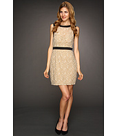 Max and Cleo - Maddy Scalloped Lace Dress
