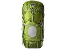 Osprey Aether 85 Pack (Bonsai Green)