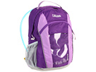 CamelBak Scout 50 oz. (Youth) (Pansy/African Violet)
