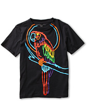 Stella McCartney Kids - Arlo Boys S/S Tee w/ Parrot Graphic (Toddler/Little Kids/Big Kids)