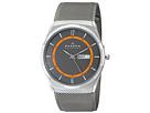 Skagen Skagen SKW6007 Aktiv Mesh Titanium Watch