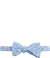 Vineyard Vines - Shells Printed Bow Tie