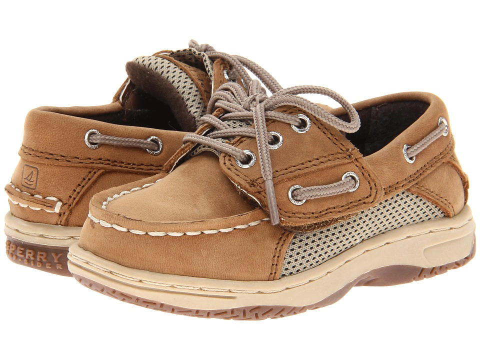 Sperry Top-Sider Kids - Billfish A/C (Toddler/Little Kid) (Dark Tan) Boys Shoes