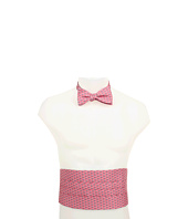 Vineyard Vines - Dragonfly Cummerbund Set