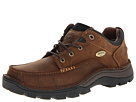 Irish Setter Borderland Oxford