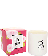 Archipelago Botanicals - Colors of the Season Boxed Candle
