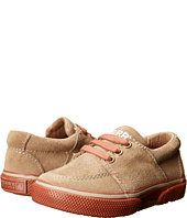 Sperry Top-Sider Kids - Voyager (Toddler/Little Kid)