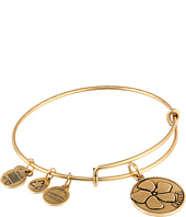 Alex and Ani - Friend Charm Bangle