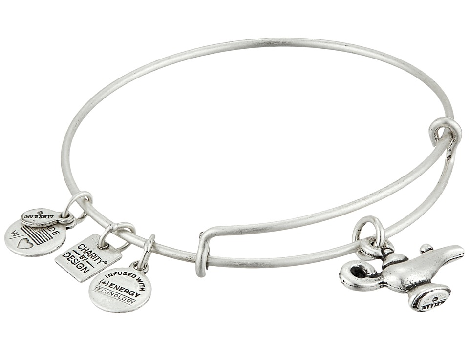 Alex and Ani - Lamp Of Light Charm Bangle