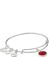 Alex and Ani - January Birthstone Charm Bangle