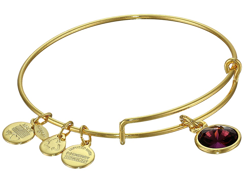 Alex and Ani - February Birthstone Charm Bangle (Rafaelian Gold Finish) Bracelet