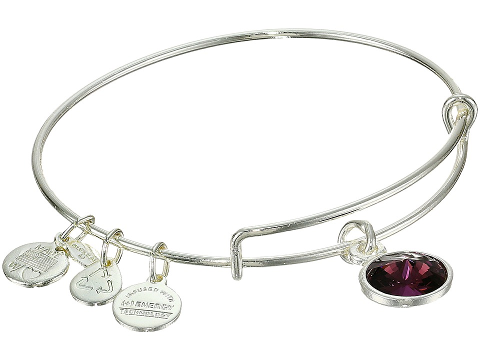 Alex and Ani - February Birthstone Charm Bangle (Rafaelian Silver Finish) Bracelet