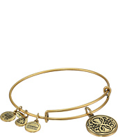 Alex and Ani - Path Of Life® Charm Bangle