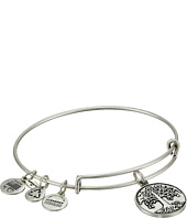 Alex and Ani - Tree of Life Charm Bangle