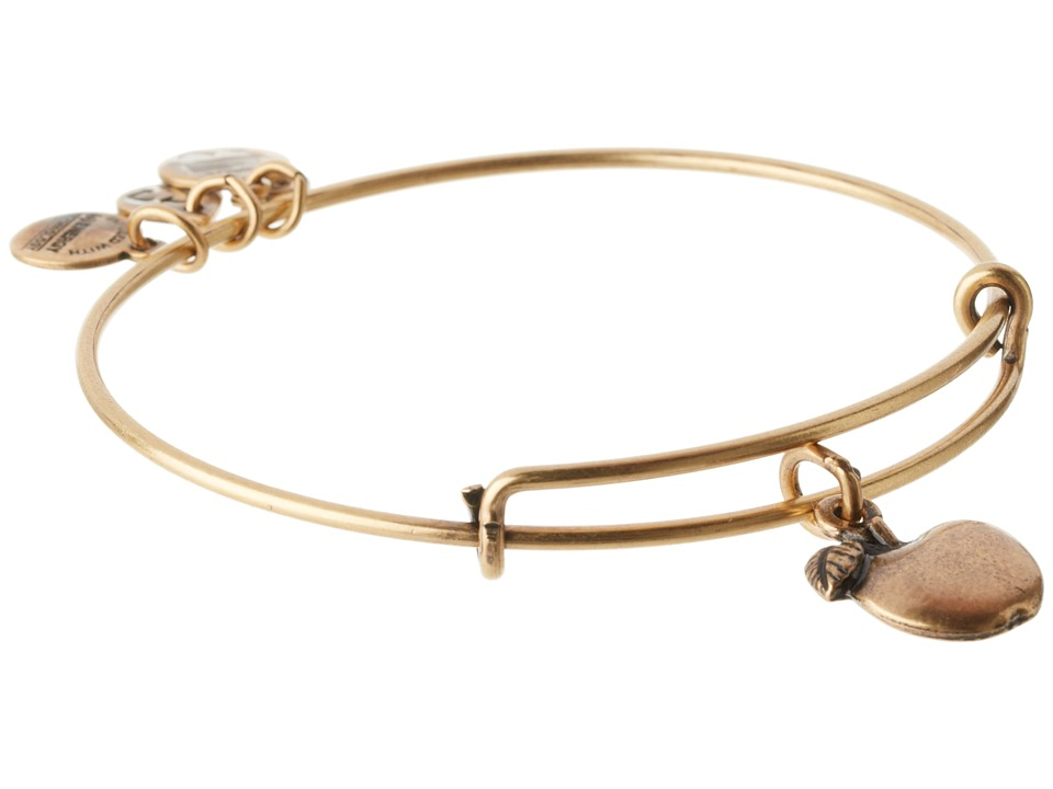 Alex and Ani Apple Of Abundance Charm Bangle Russian Gold Finish Bracelet