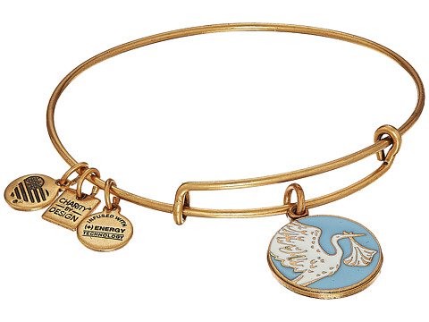 Alex and Ani Blue Special Delivery Charm Bangle