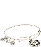 Alex and Ani - Northeastern University™ Alumni Charm Bangle