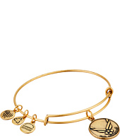 Alex and Ani - U.S. Air Force Charm Bangle