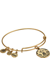 Alex and Ani - Los Angeles Charm Bangle