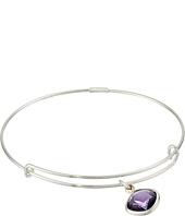 Alex and Ani - Precious Purple Velvet Spirituality Charm Bangle