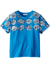 Dolce & Gabbana - Shell Print Tee (Toddler/Little Kids)