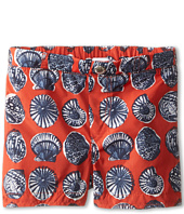 Dolce & Gabbana - Shell Print Swim Trunk (Infant)