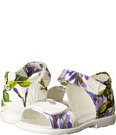 Dolce & Gabbana Kids - Mediterranean Floral Sandal (Toddler)