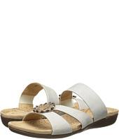Acorn - Samoset Slide