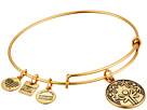 Alex and Ani Charity By Design - Power of Unity Bracelet