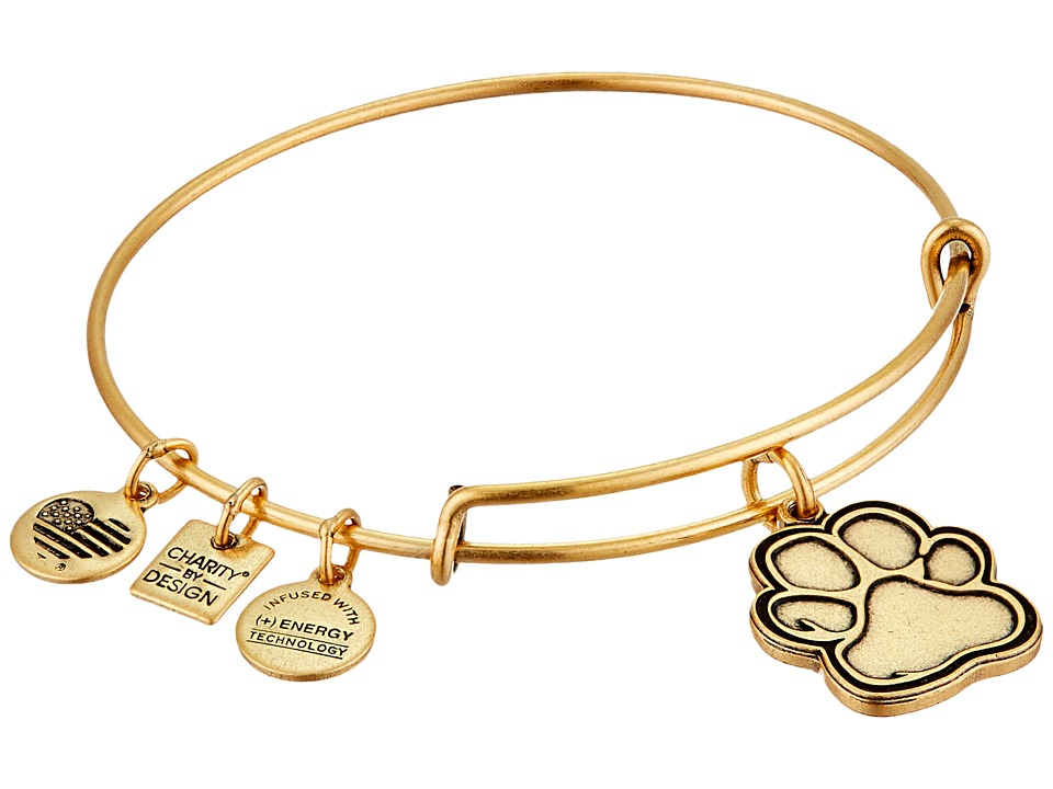 Alex and Ani - Charity By Design - Prints of Love Bracelet