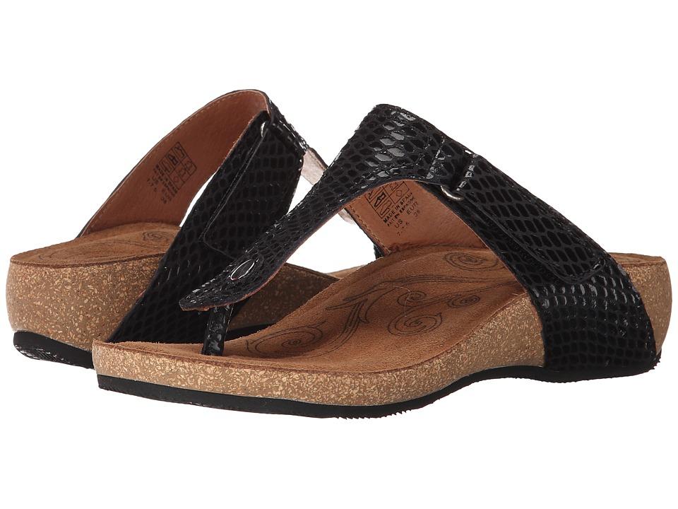 taos Footwear Lucy Black Womens Shoes