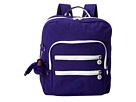 Kipling Kaden Backpack (Blueberry Pie Spectator)